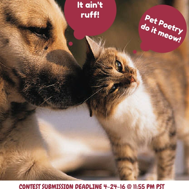 Pet Poetry: Do It Meow! | Memee's Musings