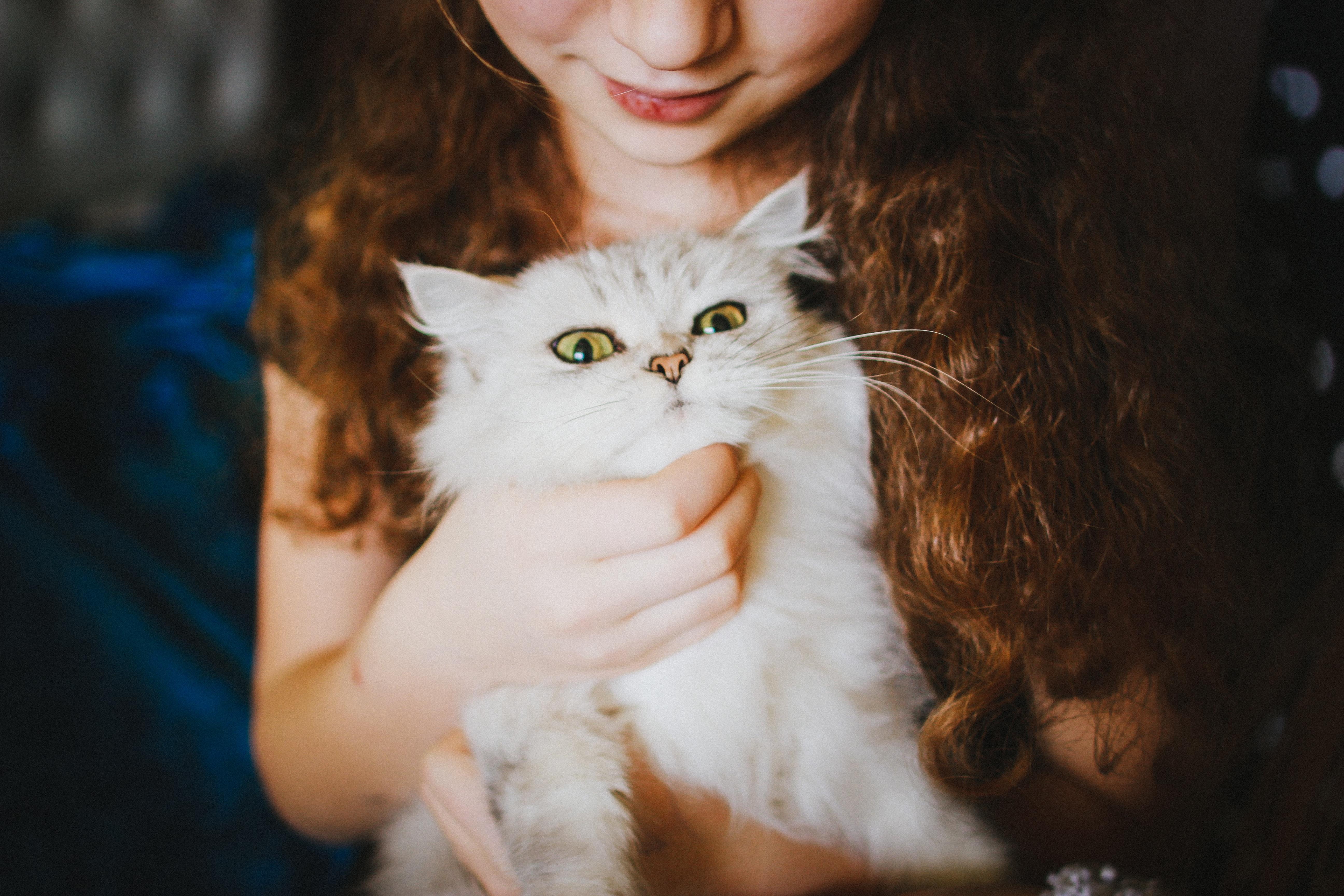Pets! | Memee's Musings